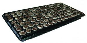 Highsun-papertec tray